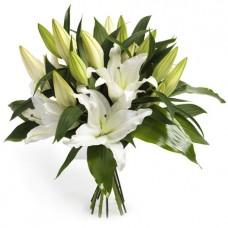 Белые лилии поштучно от 9 штук